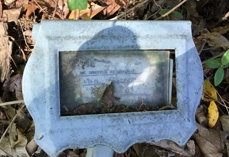 RICHARDSON, DEMETRIUS - Shelby County, Tennessee | DEMETRIUS RICHARDSON - Tennessee Gravestone Photos