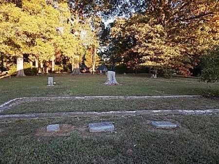*SANGIE CEMETERY OVERVIEW,  - Shelby County, Tennessee |  *SANGIE CEMETERY OVERVIEW - Tennessee Gravestone Photos