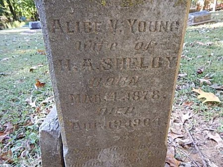 YOUNG SHELBY, ALICE V - Shelby County, Tennessee | ALICE V YOUNG SHELBY - Tennessee Gravestone Photos