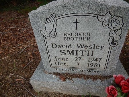 SMITH, DAVID WESLEY - Shelby County, Tennessee | DAVID WESLEY SMITH - Tennessee Gravestone Photos