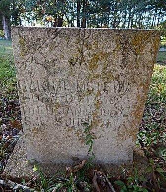 WALKER STEWART, CARRIE M - Shelby County, Tennessee | CARRIE M WALKER STEWART - Tennessee Gravestone Photos