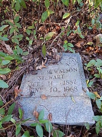 WATSON STEWART, LILLIE M - Shelby County, Tennessee | LILLIE M WATSON STEWART - Tennessee Gravestone Photos
