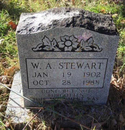 STEWART, W. A. - Shelby County, Tennessee | W. A. STEWART - Tennessee Gravestone Photos