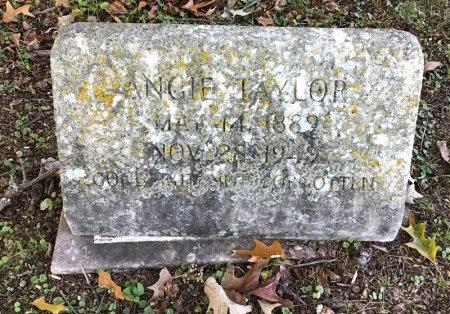 TAYLOR, ANGIE - Shelby County, Tennessee | ANGIE TAYLOR - Tennessee Gravestone Photos