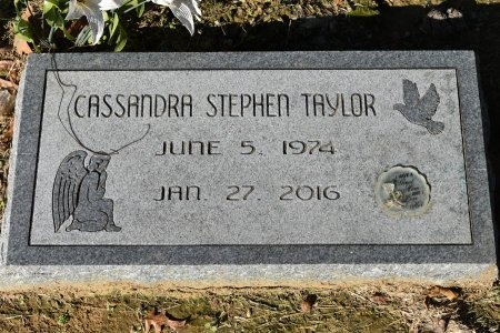 TAYLOR, CASSANDRA STEPHEN - Shelby County, Tennessee   CASSANDRA STEPHEN TAYLOR - Tennessee Gravestone Photos