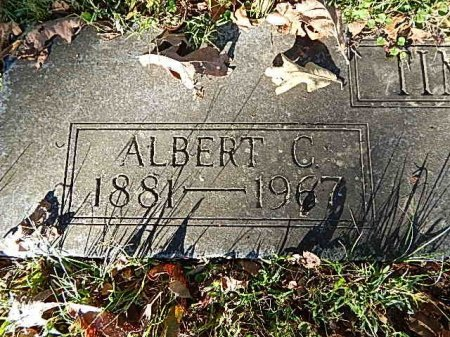 TIMBS, ALBERT CECIL - Shelby County, Tennessee | ALBERT CECIL TIMBS - Tennessee Gravestone Photos