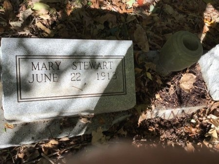 VANN, MARY - Shelby County, Tennessee | MARY VANN - Tennessee Gravestone Photos