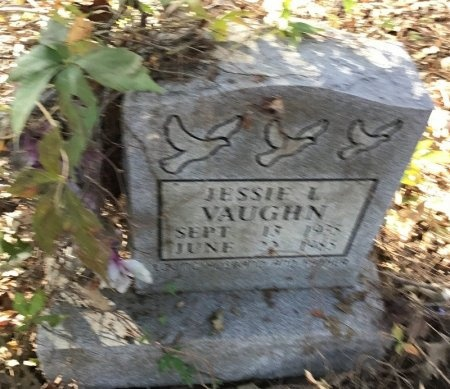 VAUGHN, JESSE L. - Shelby County, Tennessee | JESSE L. VAUGHN - Tennessee Gravestone Photos