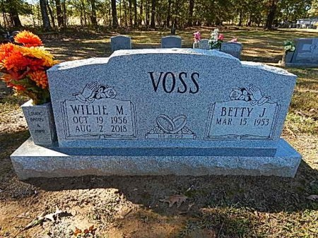 VOSS, WILLIE M - Shelby County, Tennessee | WILLIE M VOSS - Tennessee Gravestone Photos
