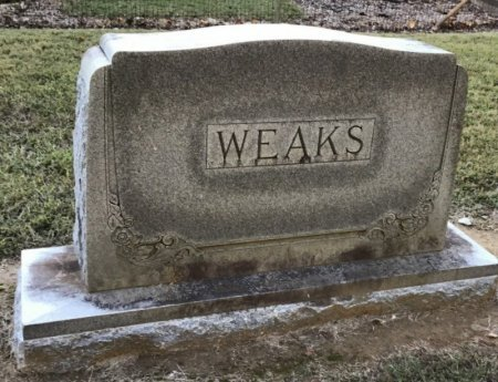 WEAKS, FAMILY STONE - Shelby County, Tennessee | FAMILY STONE WEAKS - Tennessee Gravestone Photos