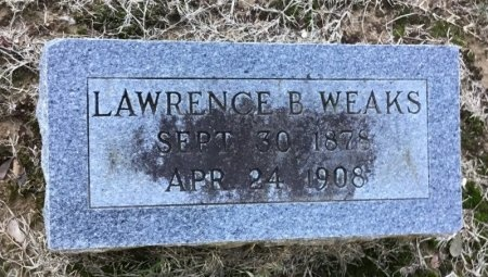 WEAKS, LAWRENCE B. - Shelby County, Tennessee | LAWRENCE B. WEAKS - Tennessee Gravestone Photos