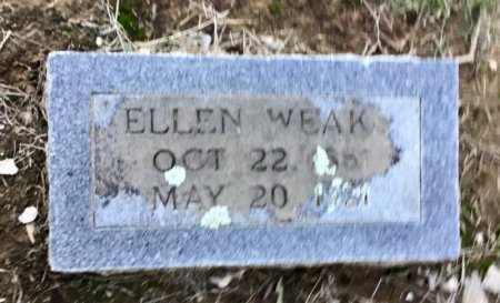 CARTER WEAKS, SARAH ELLEN - Shelby County, Tennessee | SARAH ELLEN CARTER WEAKS - Tennessee Gravestone Photos