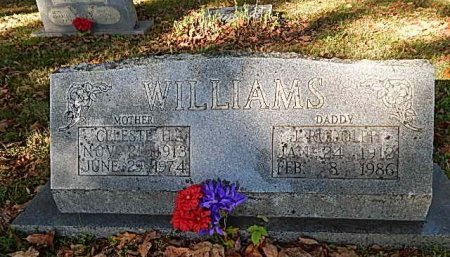 WILLIAMS, J RUDOLPH - Shelby County, Tennessee | J RUDOLPH WILLIAMS - Tennessee Gravestone Photos