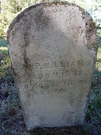 WILLIAMS, EPP - Shelby County, Tennessee | EPP WILLIAMS - Tennessee Gravestone Photos
