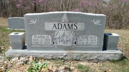 ADAMS, FLOYD HENRY - Stewart County, Tennessee | FLOYD HENRY ADAMS - Tennessee Gravestone Photos