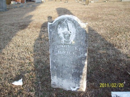 BAULT, MARY JANE - Stewart County, Tennessee | MARY JANE BAULT - Tennessee Gravestone Photos