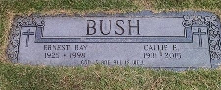 BUSH, ERNEST RAY - Stewart County, Tennessee | ERNEST RAY BUSH - Tennessee Gravestone Photos
