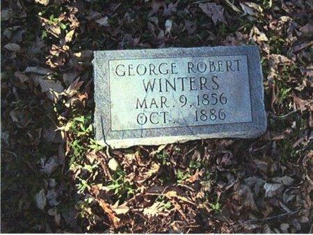 WINTERS, GEORGE ROBERT - Stewart County, Tennessee | GEORGE ROBERT WINTERS - Tennessee Gravestone Photos
