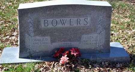 BOWERS, ELIZA J - Sullivan County, Tennessee   ELIZA J BOWERS - Tennessee Gravestone Photos