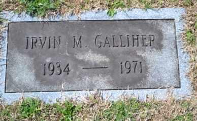 GALLIHER, IRVIN M - Sullivan County, Tennessee | IRVIN M GALLIHER - Tennessee Gravestone Photos