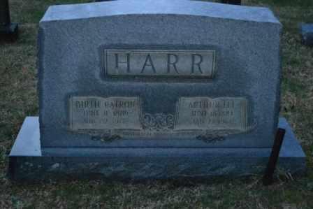 HARR, BIRTIE - Sullivan County, Tennessee | BIRTIE HARR - Tennessee Gravestone Photos