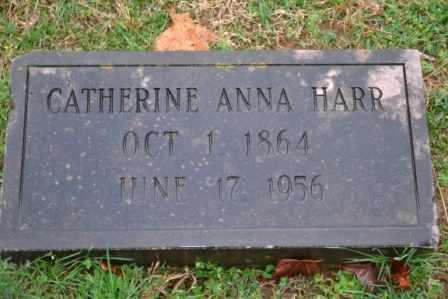 HARR, CATHERINE ANNA - Sullivan County, Tennessee | CATHERINE ANNA HARR - Tennessee Gravestone Photos