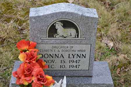 HARR, DONNA LYNN - Sullivan County, Tennessee | DONNA LYNN HARR - Tennessee Gravestone Photos