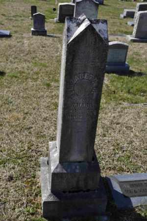 HARR, ELIZABETH R - Sullivan County, Tennessee | ELIZABETH R HARR - Tennessee Gravestone Photos
