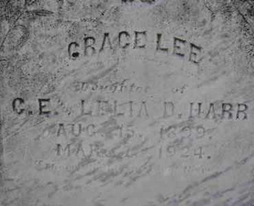 HARR, GRACE LEE (CLOSE UP) - Sullivan County, Tennessee | GRACE LEE (CLOSE UP) HARR - Tennessee Gravestone Photos