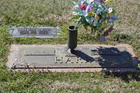 HARR, W. HENRY - Sullivan County, Tennessee   W. HENRY HARR - Tennessee Gravestone Photos