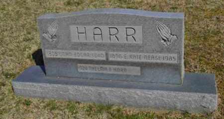 HARR, JOHN EDGAR - Sullivan County, Tennessee | JOHN EDGAR HARR - Tennessee Gravestone Photos