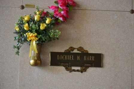 HARR, LOCHIEL M - Sullivan County, Tennessee | LOCHIEL M HARR - Tennessee Gravestone Photos