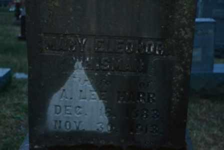HARR, MARY ELEONORA (CLOSE UP) - Sullivan County, Tennessee | MARY ELEONORA (CLOSE UP) HARR - Tennessee Gravestone Photos