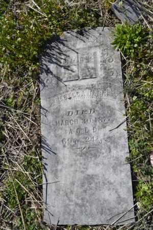 DROKE HARR, REBECCA - Sullivan County, Tennessee | REBECCA DROKE HARR - Tennessee Gravestone Photos