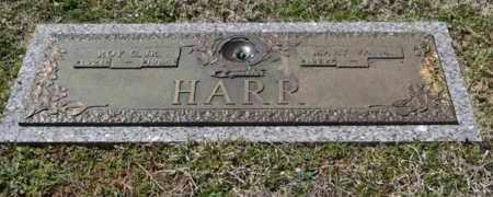 HARR, ROY C, JR - Sullivan County, Tennessee | ROY C, JR HARR - Tennessee Gravestone Photos