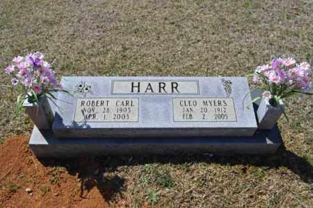 HARR, CLEO - Sullivan County, Tennessee | CLEO HARR - Tennessee Gravestone Photos