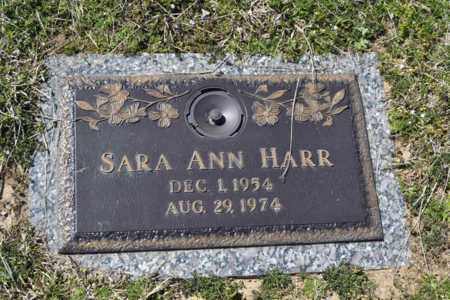 HARR, SARA ANN - Sullivan County, Tennessee | SARA ANN HARR - Tennessee Gravestone Photos