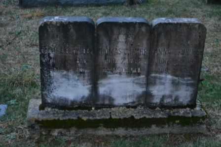 HARR, THOMAS J - Sullivan County, Tennessee | THOMAS J HARR - Tennessee Gravestone Photos