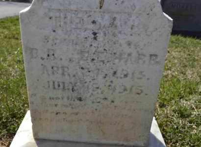 HARR, THELMA R - Sullivan County, Tennessee   THELMA R HARR - Tennessee Gravestone Photos