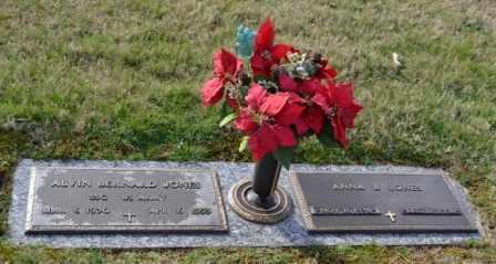 JONES, ALVIN BERNARD - Sullivan County, Tennessee | ALVIN BERNARD JONES - Tennessee Gravestone Photos