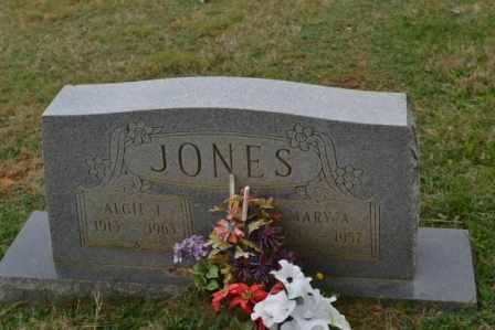 JONES, MARY A - Sullivan County, Tennessee | MARY A JONES - Tennessee Gravestone Photos