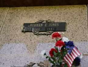 JONES, HERMAN E - Sullivan County, Tennessee   HERMAN E JONES - Tennessee Gravestone Photos