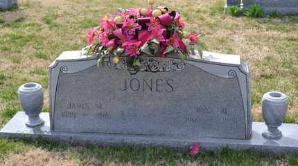 JONES, JAMES M - Sullivan County, Tennessee | JAMES M JONES - Tennessee Gravestone Photos