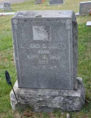 JONES, LELAND D - Sullivan County, Tennessee | LELAND D JONES - Tennessee Gravestone Photos