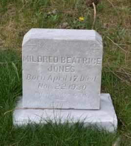 JONES, MILDRED BEATRICE - Sullivan County, Tennessee   MILDRED BEATRICE JONES - Tennessee Gravestone Photos