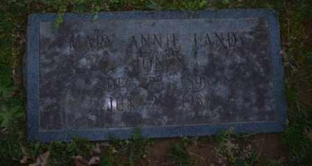 JONES, MARY ANNIE - Sullivan County, Tennessee | MARY ANNIE JONES - Tennessee Gravestone Photos