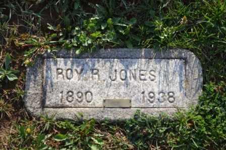 JONES, ROY RICHARD - Sullivan County, Tennessee | ROY RICHARD JONES - Tennessee Gravestone Photos