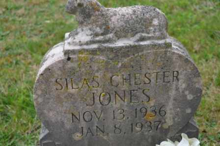JONES, SILAS CHESTER - Sullivan County, Tennessee | SILAS CHESTER JONES - Tennessee Gravestone Photos