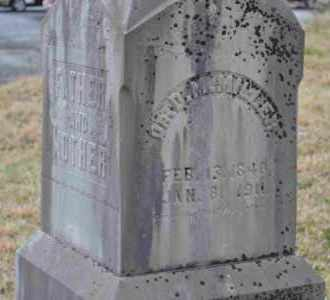MILLER, D.M. - Sullivan County, Tennessee | D.M. MILLER - Tennessee Gravestone Photos