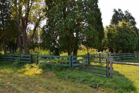 *RILEY CEMETERY ENTRANCE,  - Sullivan County, Tennessee    *RILEY CEMETERY ENTRANCE - Tennessee Gravestone Photos